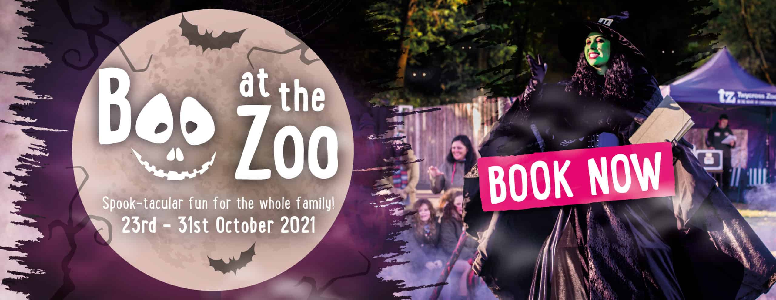 Boo at the Zoo - Derby Days Out