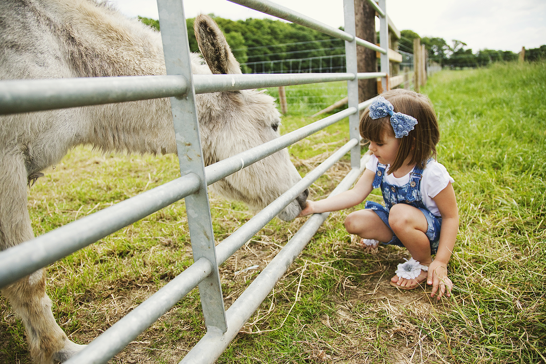 Bluebells Dairy Farm - Derby Days Out