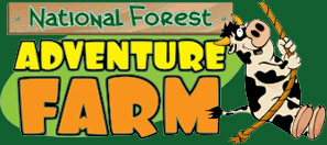 National Forest Adventure Farm - Derby Days Out