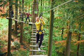 Go Ape adventures at Buxton - Derby Days Out